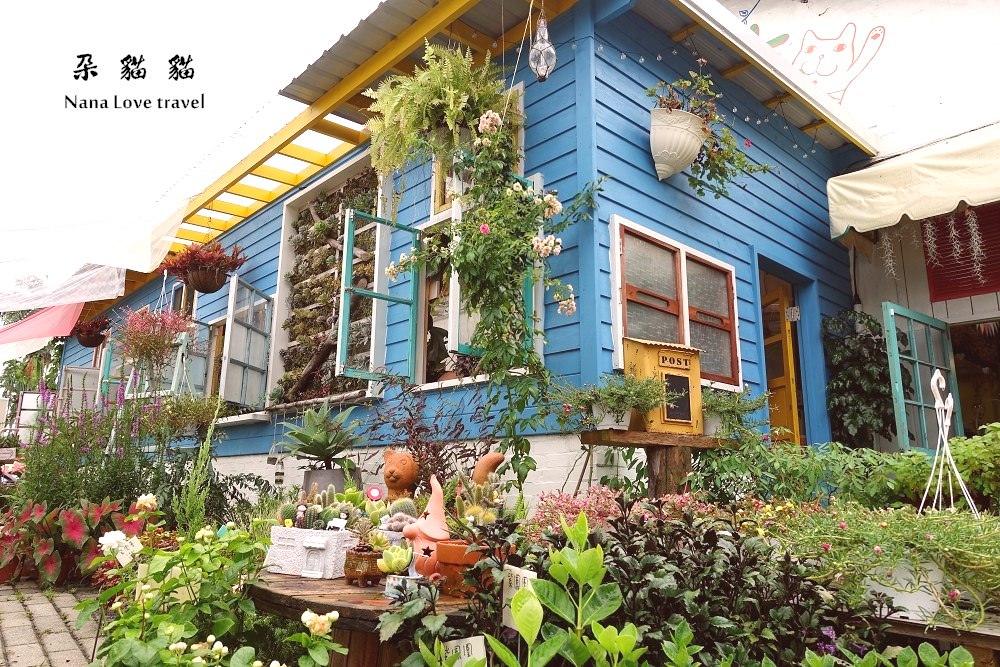 南投中興新村》朵貓貓。超療癒的乾燥花,綠色植栽花店,走進女孩的夢幻世界,藍色鄉村小屋超好拍打卡點!