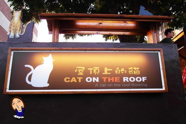 4屋頂上的貓 (1).JPG