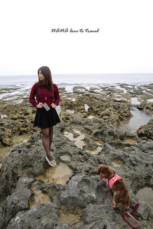 小琉球厚石群礁 (13)