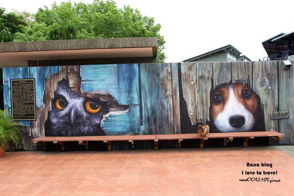 彰化田中旅遊景點,新民國小3D彩繪米格魯狗狗和貓頭鷹陪學生上課好幸福,萌達達的彩繪風一整個超療癒~