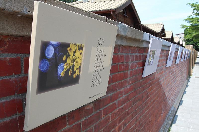 清水公學校日式宿舍群 (39)