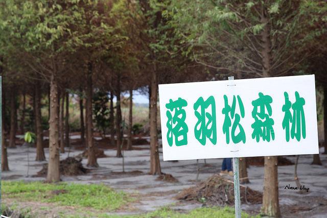 田中窯創意園區 (43)