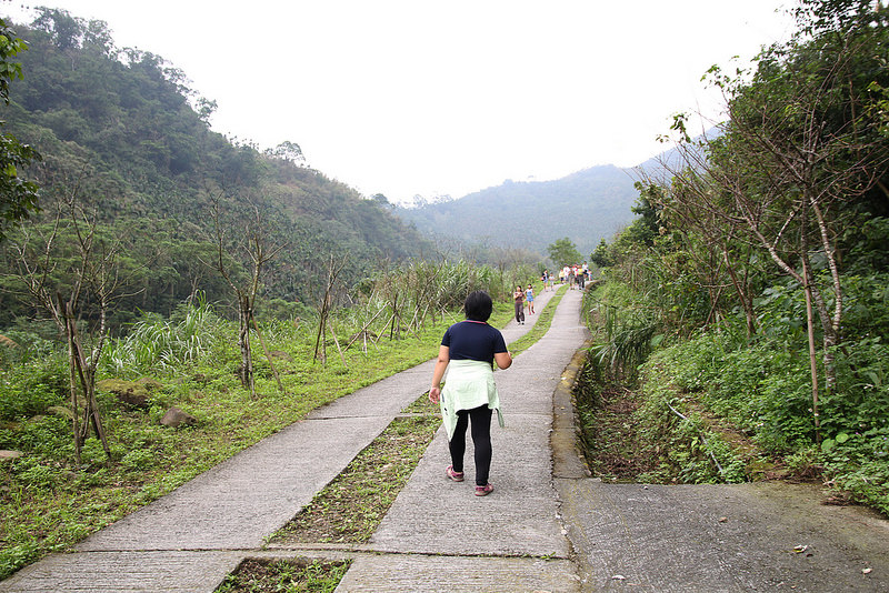 雲林景點-古坑華山小天梯‧情人橋 (5)