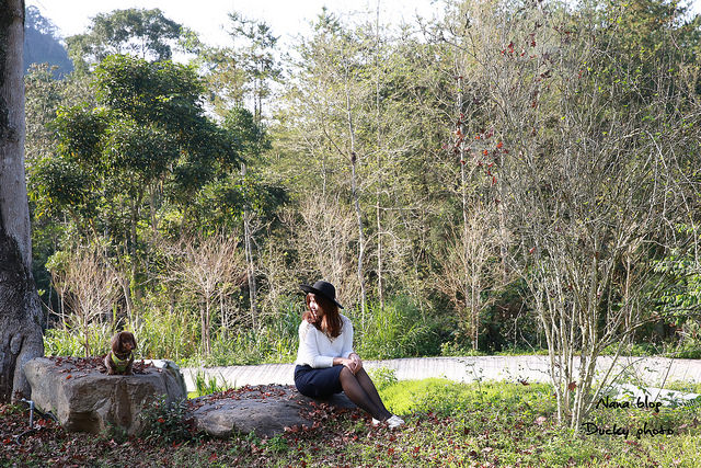 南投景點-九樹森林 (65)