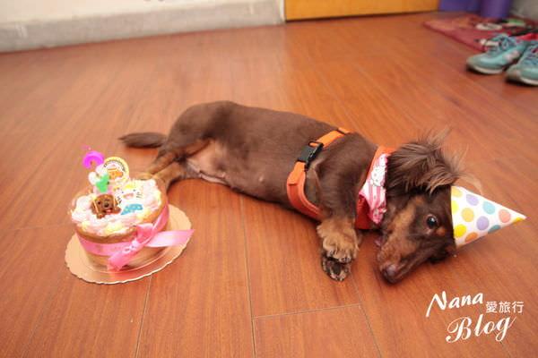 寵物蛋糕 (10).JPG