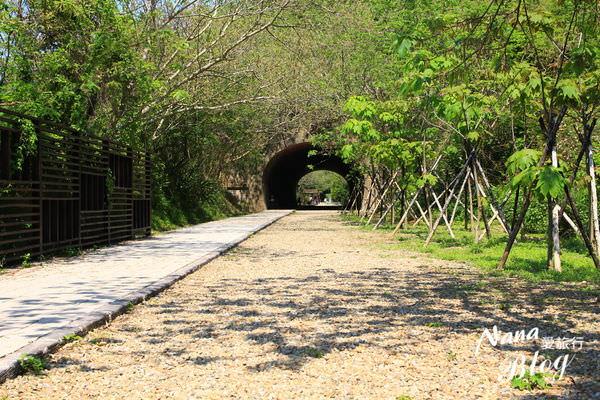 苗栗竹南崎頂子母隧道 (22).JPG