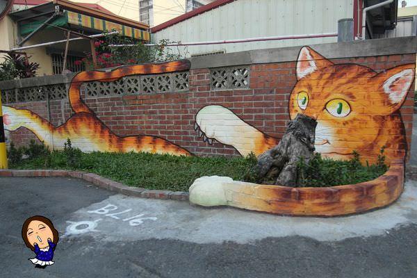 6屋頂上的貓 (1).JPG