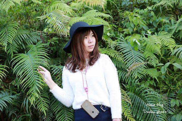 南投景點-九樹森林 (39)