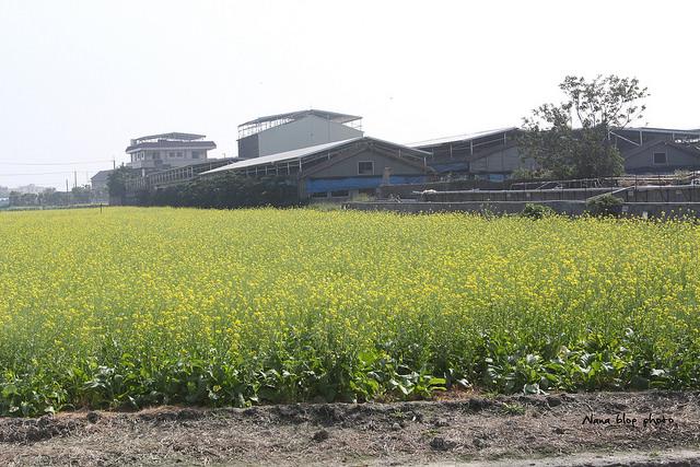 溪湖糖廠 (14)