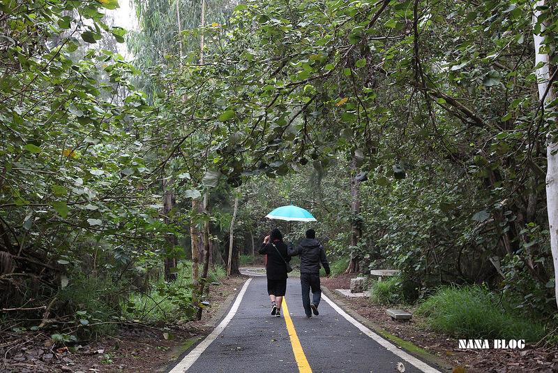 竹南景點-假日之森 (7)