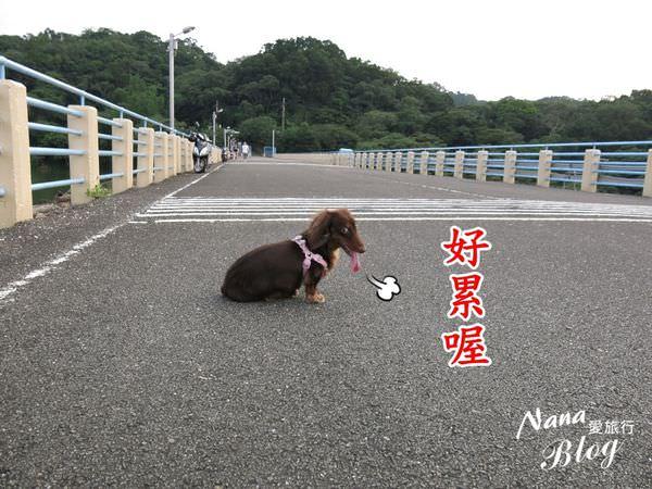 苗栗景點 明德水庫 (21).JPG