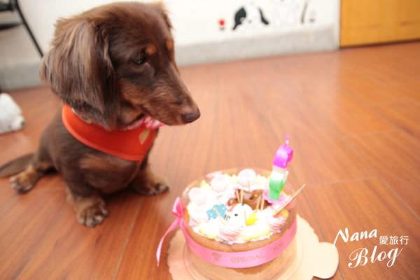 寵物蛋糕 (5).JPG