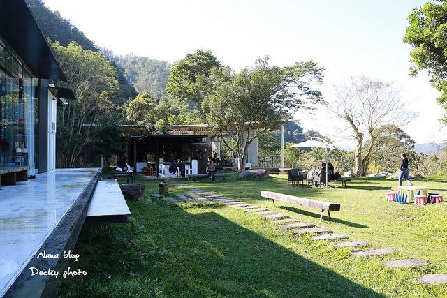 南投景點-九樹森林 (5)