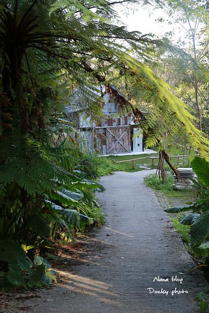 南投景點-九樹森林 (40)