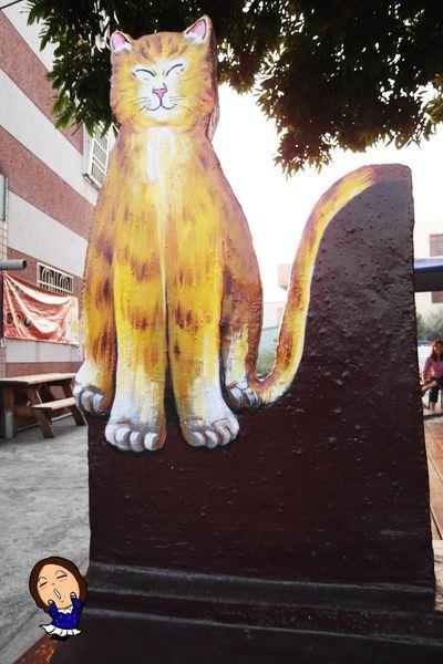 4屋頂上的貓 (2).JPG