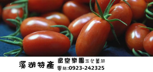 溪湖美食-4溫室樂園玉女蕃茄