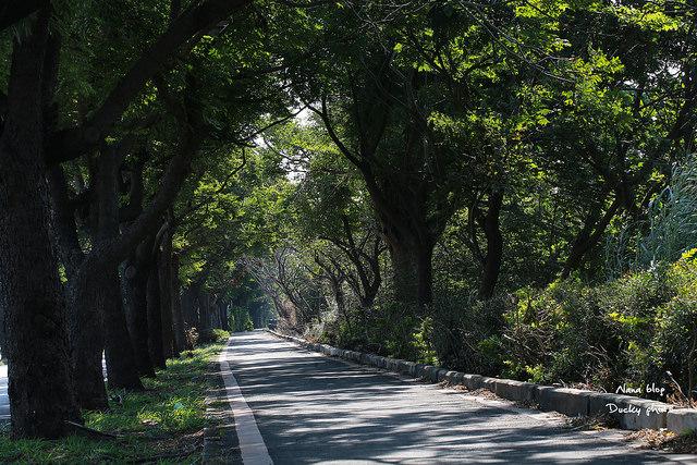 東螺溪生態教育園區 (43)