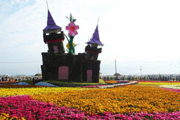 【台中】進入尾聲隨著花先子走進童話的夢境❤2013新社花海節。臺中國際花毯節
