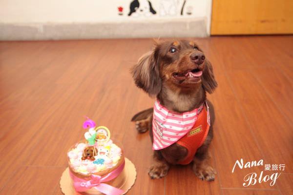寵物蛋糕 (8).JPG