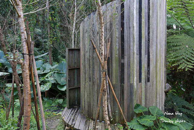 南投景點-九樹森林 (44)