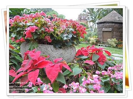 【台北旅遊景點】歐洲風情,花彩繽紛仿佛置身世外桃源❤自來水博物館