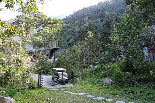 南投景點-九樹森林 (57)