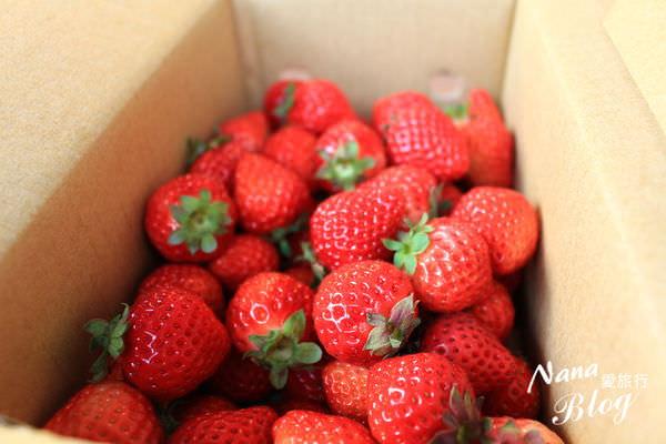 大湖草莓 (8).JPG
