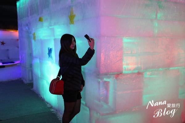 2015台中哈爾冰冰雕展 (58).JPG