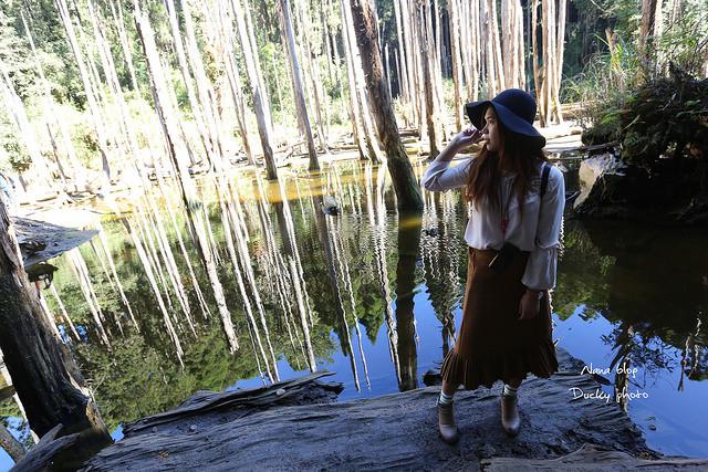 溪頭忘憂森林 (23)