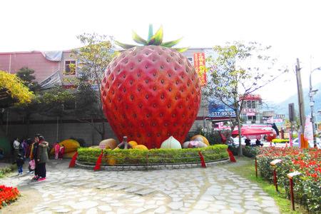 5草莓園 (4).JPG