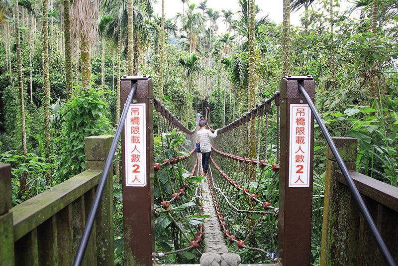 雲林景點-古坑華山小天梯‧情人橋 (15)