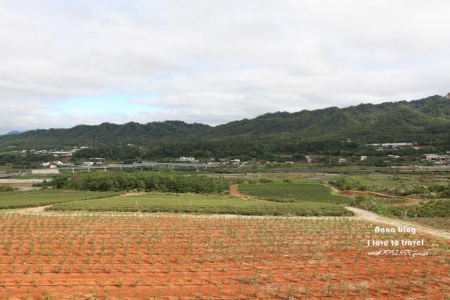 銅鑼茶廠-台灣農林 (29)