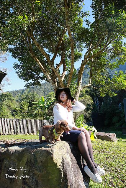 南投景點-九樹森林 (28)