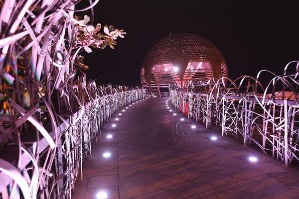 【台東必去景點】海濱公園國際地標│海濱公園生命之樹,浪漫的邂逅,越夜越美麗!台東市美食